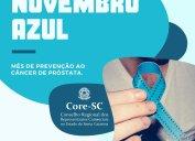 NOVEMBRO AZUL alerta sobre a importância da prevenção e do diagnóstico precoce do câncer de próstata, segunda principal causa de morte por câncer em homens no Brasil.