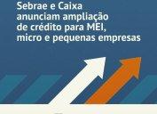 CORONAVÍRUS: Sebrae e Caixa Econômica Federal lançam parceria para ampliar operações de crédito, com taxas mais baixas e prazo maior para pequenas e micro empresas.